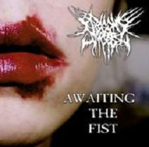 Awaiting The Fist cover art