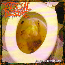 Drowned In Rectal Sludge cover art