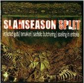 Slamseason Split cover art