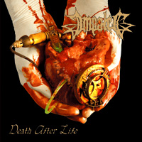 Death After Life cover art