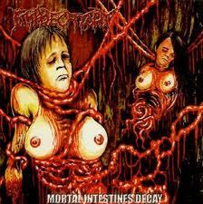 Mortal Intestines Decay cover art