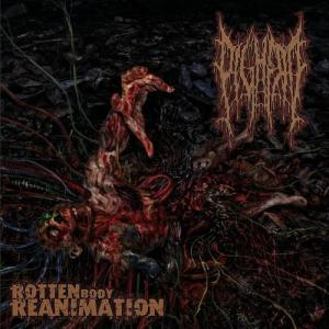 Rotten Body Reanimation cover art