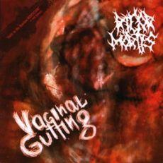Vaginal Gutting cover art