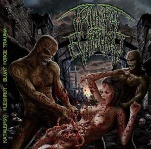 Triumph Of Evilution cover art